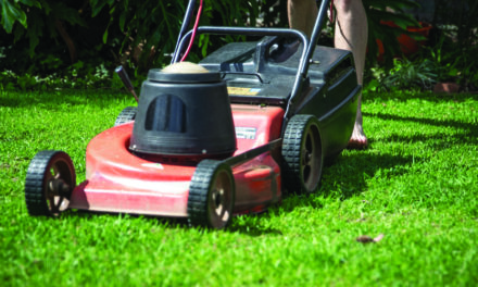 Best Corded Electric Lawn Mower with Better Mechanism I BackdoorPro