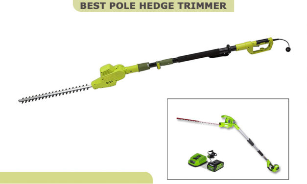 Best Pole Hedge Trimmer to Make Yard Good-Looking and Maintain