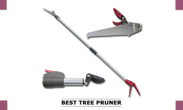 Best pole Pruner that Offers Different Results I Backdoor Pro